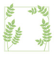 branch and leaf with frame isolated icon vector image vector image