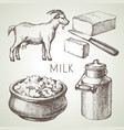 hand drawn sketch milk products set black and vector image vector image