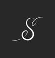 Letter S mockup logo templete design lettering vector image