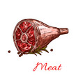 raw fresh hind quarter meat isolated icon vector image vector image