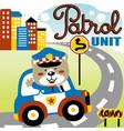 cartoon bear patrol in street city vector image vector image