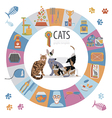 Cat characters and vet care icon set flat style vector image vector image