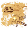 hand drawn sketch milk products background vintage vector image vector image