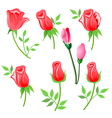 roses twig with leaves set vector image vector image