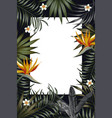 vertical poster night jungle frame banner flowers vector image