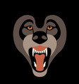 wolf face front view flat style vector image