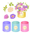 boxes and flowers collection vector image