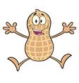 Funny Peanut Cartoon vector image vector image