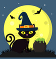 happy halloween a black cat of halloween in a vector image