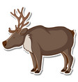 sticker design with cute moose isolated vector image vector image