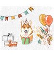 birthday card with corgi that congratulates you vector image