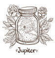 jupiter in a glass jar the planet of the solar vector image vector image