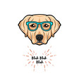 labrador dog wearing glasses on white background vector image