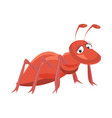 red ant cartoon on white vector image vector image