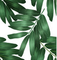 seamless foliage pattern5 vector image vector image