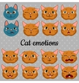 Set of faces of cats on a gray background vector image