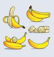 set whole and chopped various yellow banana vector image vector image