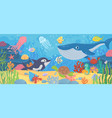 underwater ocean life dolphin exotic fishes vector image vector image