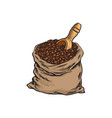 bag of roasted coffee beans with a wooden shovel vector image