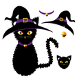 Black Cat Witch Hat vector image vector image