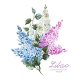 Lilac branch vector image vector image