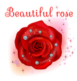 red macro rose with diamonds vector image vector image