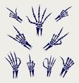 skeleton hands signs on grey background