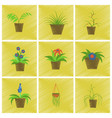 assembly flat shading style icons houseplants vector image