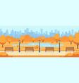 beautiful fall city road autumn park town vector image