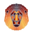 Bright lion portrait zodiac Leo sign vector image vector image