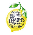 fresh lemon with hand writing phrase fruits vector image