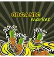 fruit organic food concept vector image vector image
