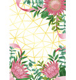 geometric background with protea flowers and vector image vector image
