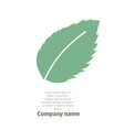 Mint logo for company isolated mint leaves on