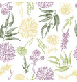 seamless pattern with plants and flowers vector image vector image