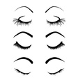 Set of four eyelashes vector image vector image