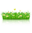 summer field of flowers with butterflies vector image vector image
