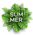 Summer tropical leaf paper cut style