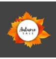 autumn new season sales and discounts deals vector image vector image