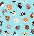 cats characters pattern vector image vector image