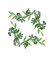 green sprigs with berries frame natural design vector image vector image