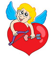 lovely cupid holding heart vector image