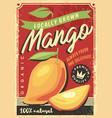 mango fruit vector image vector image