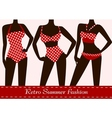 polka dotted bikinis vector image vector image