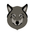 wolf face front view flat style vector image vector image