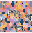 zebra positive color seamless geometrical vector image vector image