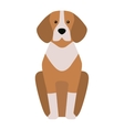 Shepherd retriever dog animal vector image