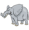 african gray elephant animal cartoon character vector image vector image