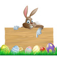 bunny character pointing and easter eggs vector image