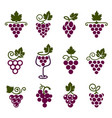 grapes icons set color vector image
